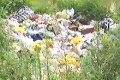 Депутаты Украины откажутся от охраны природы?