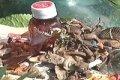 В Чернигове рядом с артезианской скважиной обнаружили мусорную свалку. ВИДЕО