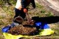 В Чернигове флагом Украины убирали мусор. ФОТО