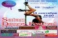 Satan Dance Festival: конкурс по pole dance и стрип пластике в Чернигове. Анонс