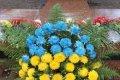69-я годовщина освобождения Украины в Чернигове. ФОТО