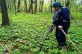 В Черниговской области уничтожили 20 взрывоопасных предметов. ФОТО