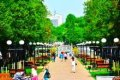 Реконструкции скверов и аллей в Чернигове будет продолжаться
