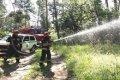 В Черниговской области пожарные и лесники отработали совместные действия по ликвидации возгораний в лесных массивах