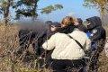 Убийство в Черниговской области. Зарезали 21-летнего парня. ФОТО